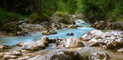 Zauberwald v Berchtesgadenu